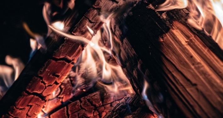 Wood to Avoid Burning